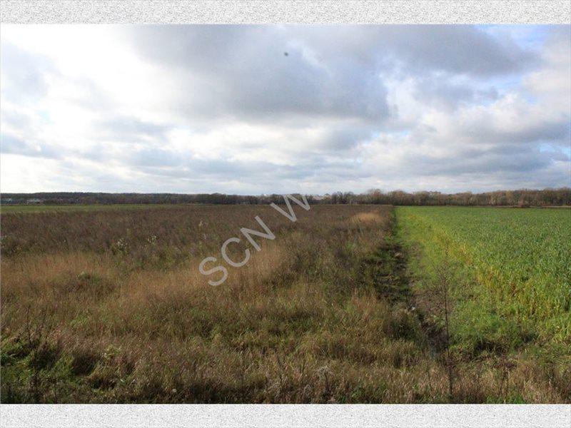 Działka rolna na sprzedaż Warszawa, Wilanów  4388m2 Foto 11