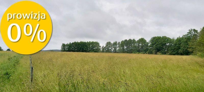 Działka rolna na sprzedaż Kukułowo  10013m2 Foto 1