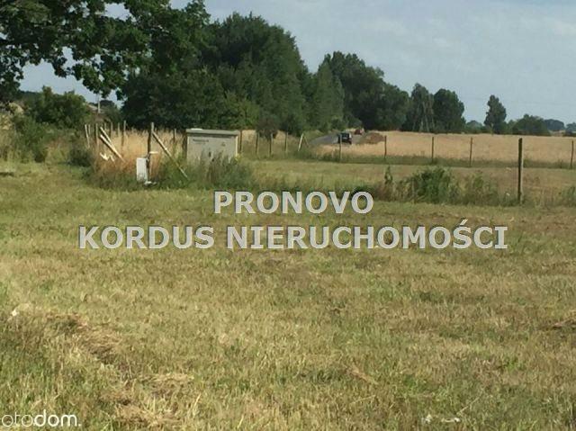 Działka leśna na sprzedaż Wojtkowa, Trzcianiec  1958400m2 Foto 6