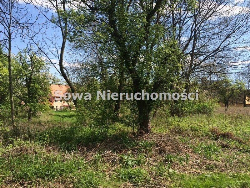 Działka inna na sprzedaż Świebodzice, Pełcznica  13000m2 Foto 4