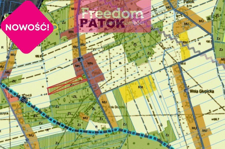Działka leśna na sprzedaż Patok  16806m2 Foto 7