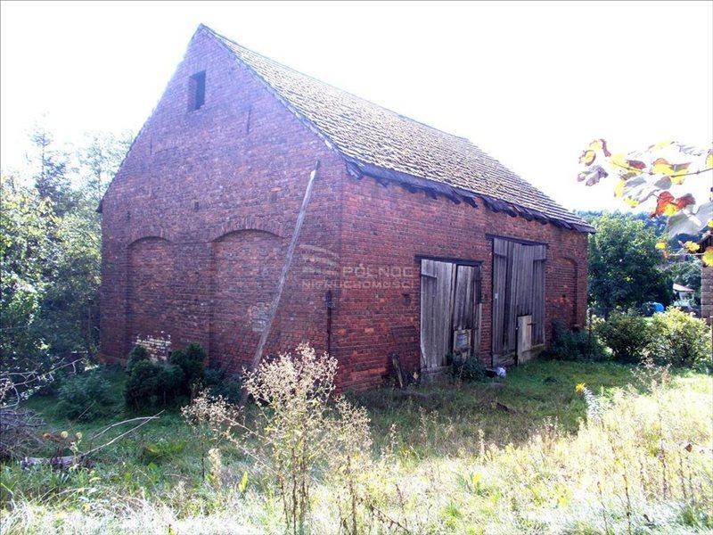 Lokal użytkowy na sprzedaż Pławna Dolna  806m2 Foto 5