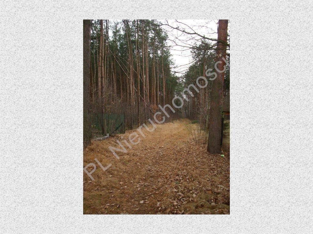 Działka leśna na sprzedaż Stefanowo  1900m2 Foto 2