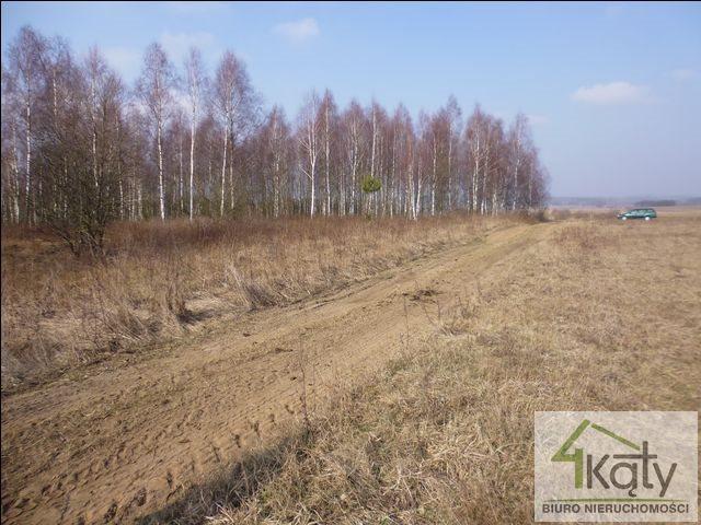Działka rolna na sprzedaż Czarny Kierz, Czarny Kierz, Czarny Kierz  16500m2 Foto 1