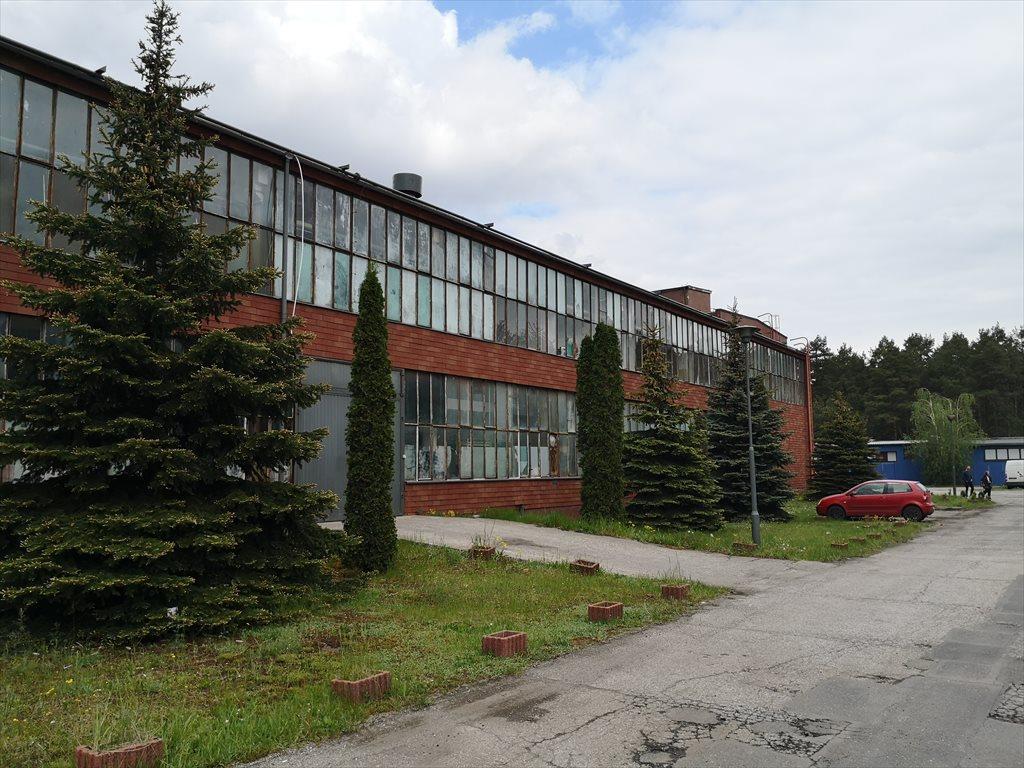 Lokal użytkowy na sprzedaż Bydgoszcz, Górny Taras, Glinki, Glinki 146  2549m2 Foto 4