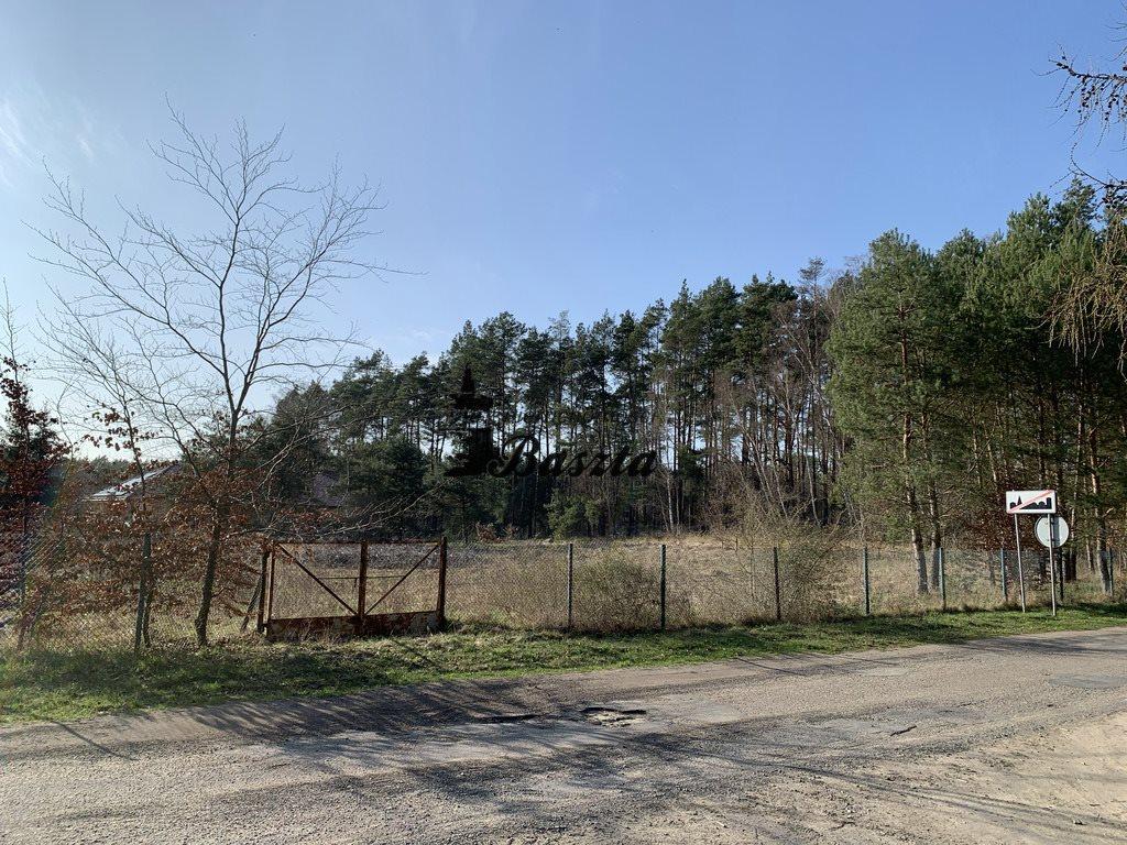 Działka budowlana na sprzedaż Wirów  5400m2 Foto 7