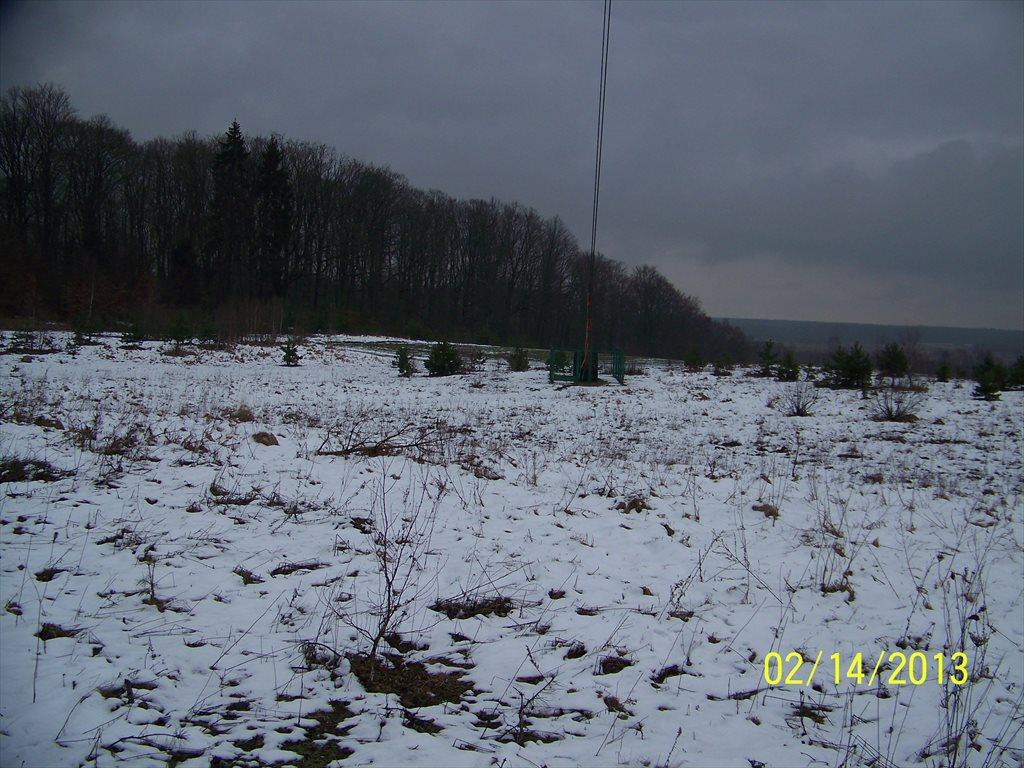 Działka rolna na sprzedaż Sławoborze  50000m2 Foto 3