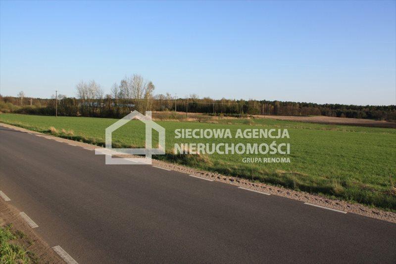 Działka siedliskowa na sprzedaż Stara Kiszewa  8767m2 Foto 7
