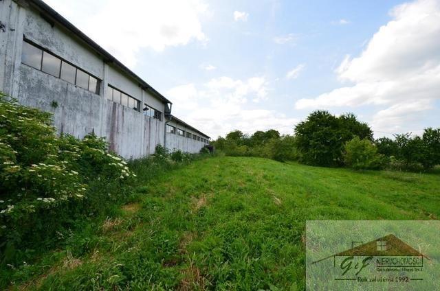 Lokal użytkowy na sprzedaż Maćkowice  488m2 Foto 11