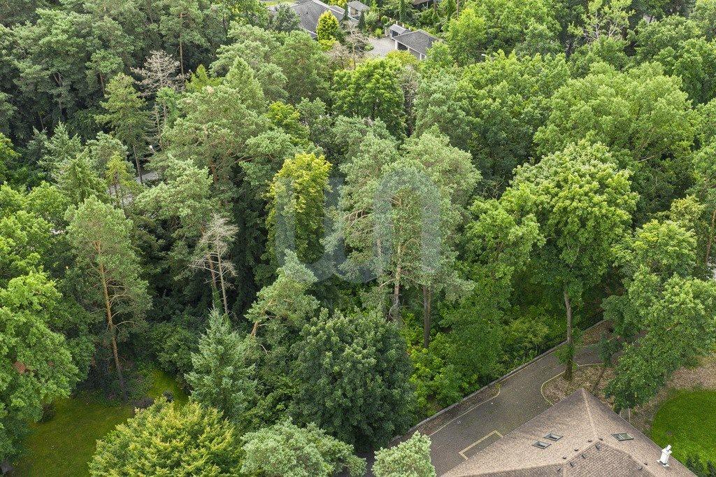Działka leśna na sprzedaż Zalesie Górne  2250m2 Foto 5