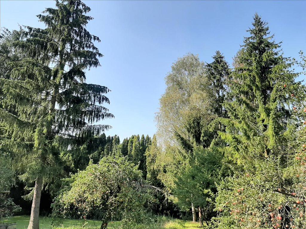 Dom na sprzedaż Dąbrowica, Jastków  160m2 Foto 8