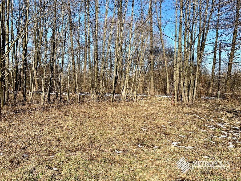 Działka budowlana na sprzedaż Regulice  8600m2 Foto 4