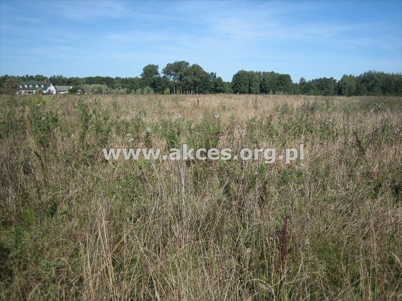 Działka budowlana na sprzedaż Adamów-Parcel  3850m2 Foto 1