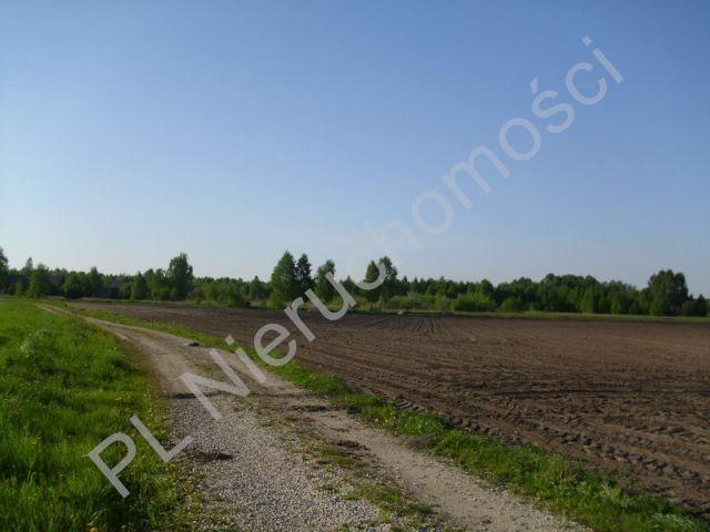Działka budowlana na sprzedaż Szamoty  1648m2 Foto 7