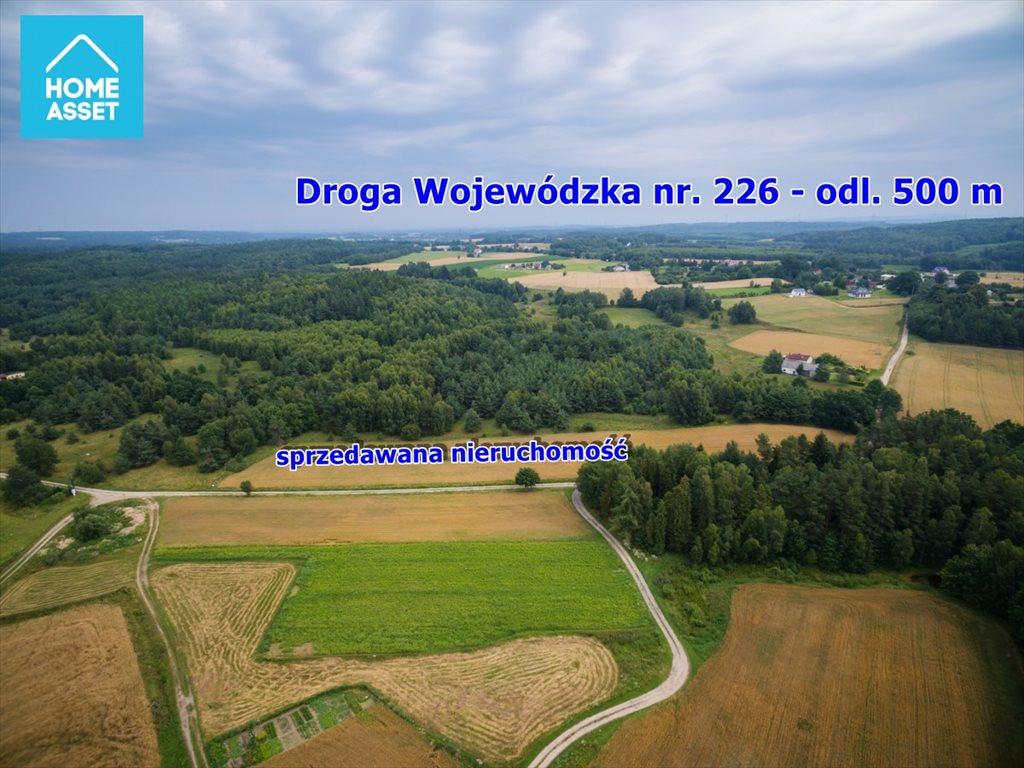Działka rolna na sprzedaż Błotnia  9300m2 Foto 3