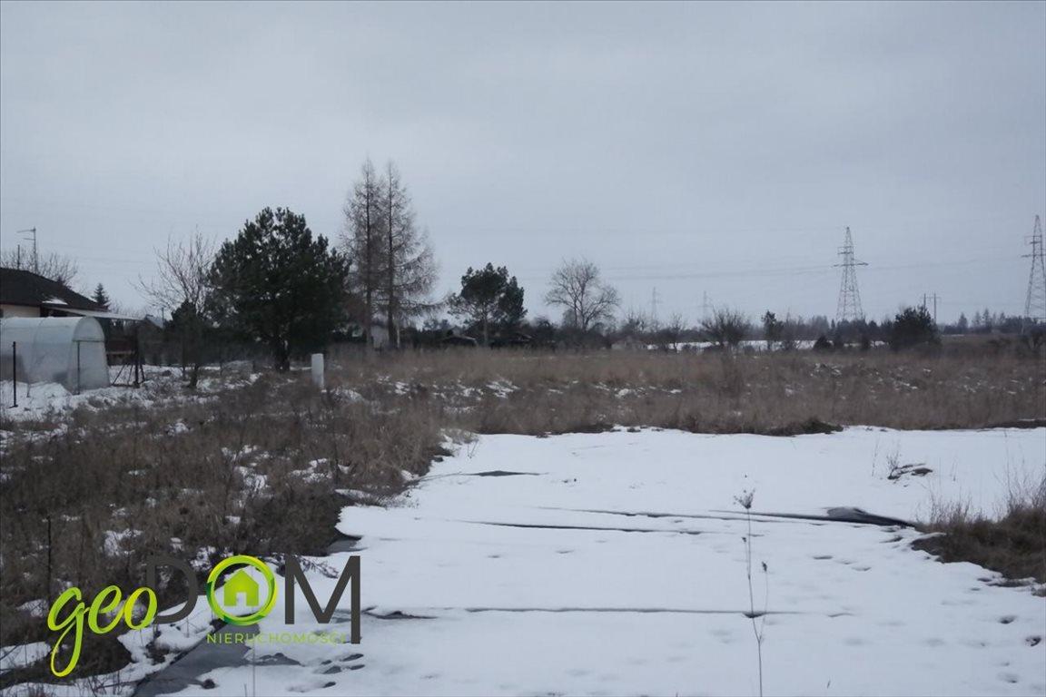 Działka budowlana na sprzedaż Chełm, Poleska  3000m2 Foto 5