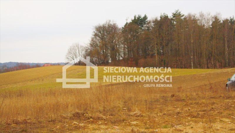 Działka budowlana na sprzedaż Kobysewo  1131m2 Foto 5