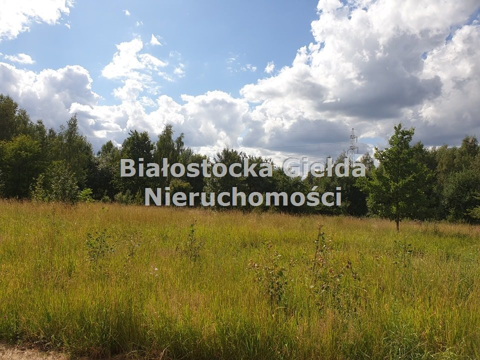Działka inna na sprzedaż Dobrzyniewo Duże, Nowe Aleksandrowo  2950m2 Foto 1