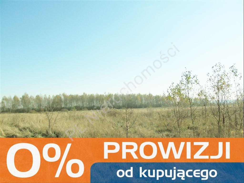 Działka rolna na sprzedaż Tyborów  30000m2 Foto 1