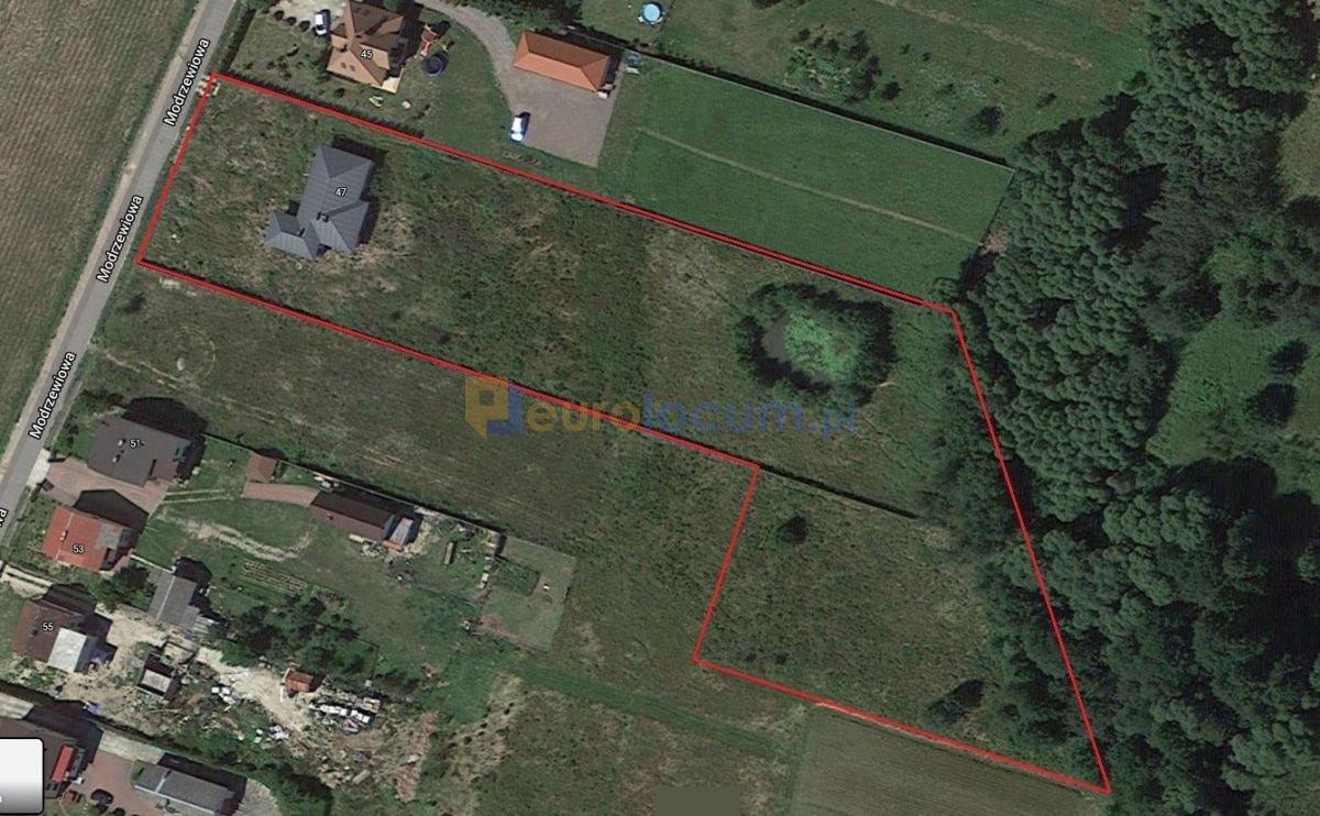 Dom na sprzedaż Masłów Pierwszy, Modrzewiowa  168m2 Foto 2