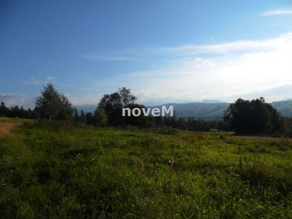 Działka rolna na sprzedaż Dzianisz  2508m2 Foto 9