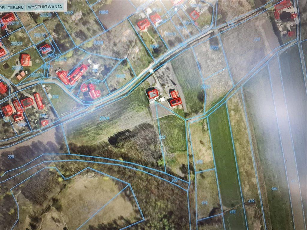 Działka budowlana na sprzedaż Niemstów  2500m2 Foto 1