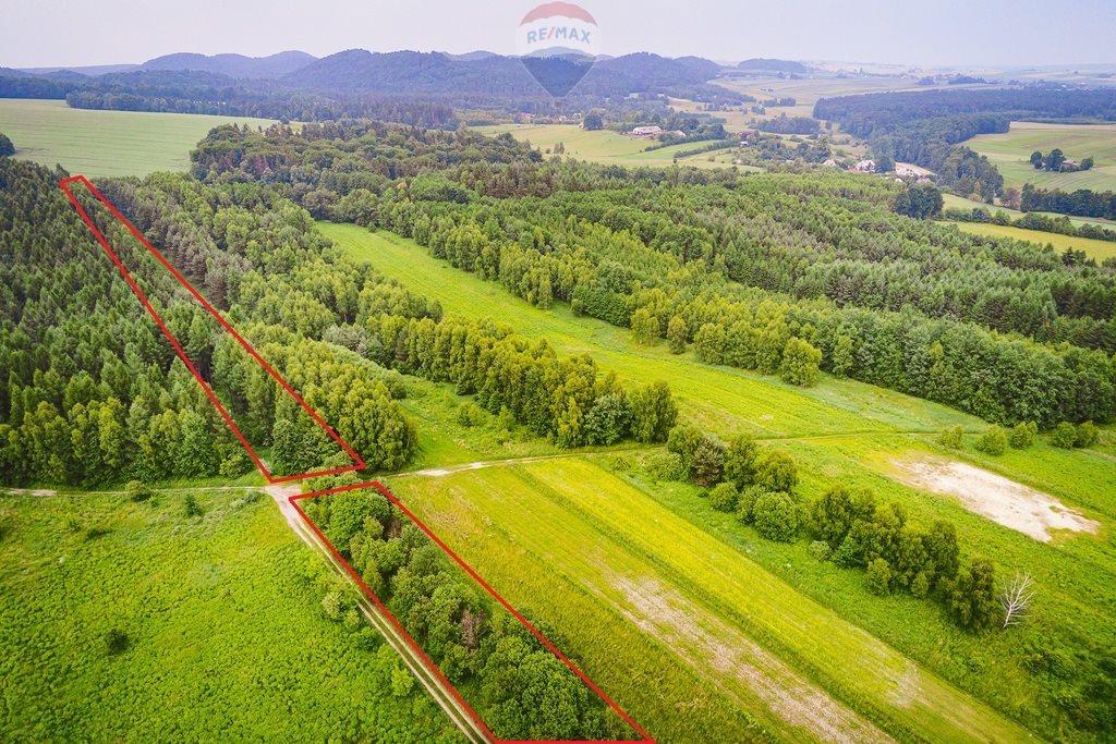 Działka rolna na sprzedaż Załęże  32873m2 Foto 3