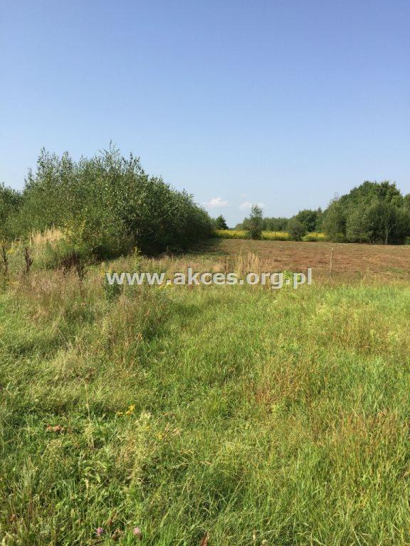Działka rolna na sprzedaż Zawodne  1200m2 Foto 2