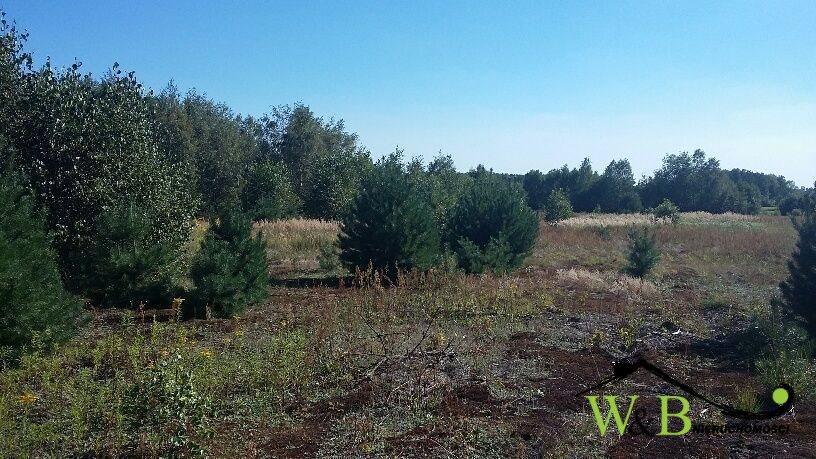 Działka rolna na sprzedaż Ożarowice, Kościuszki  8839m2 Foto 3