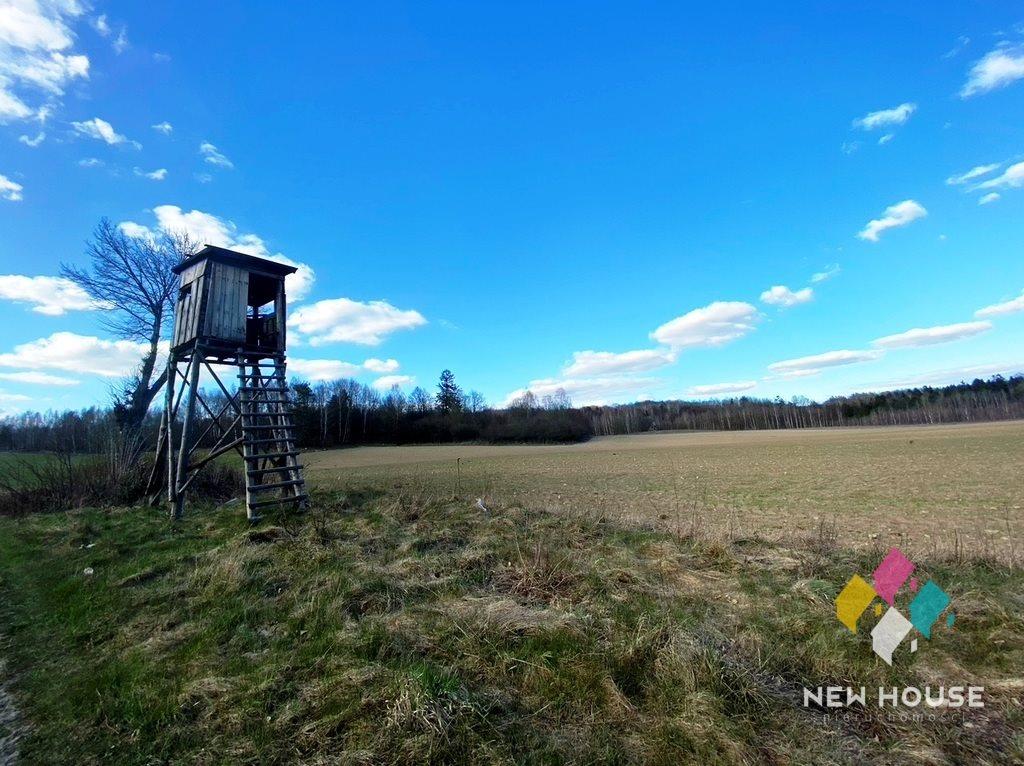 Działka rolna na sprzedaż Jagodziny  216500m2 Foto 12