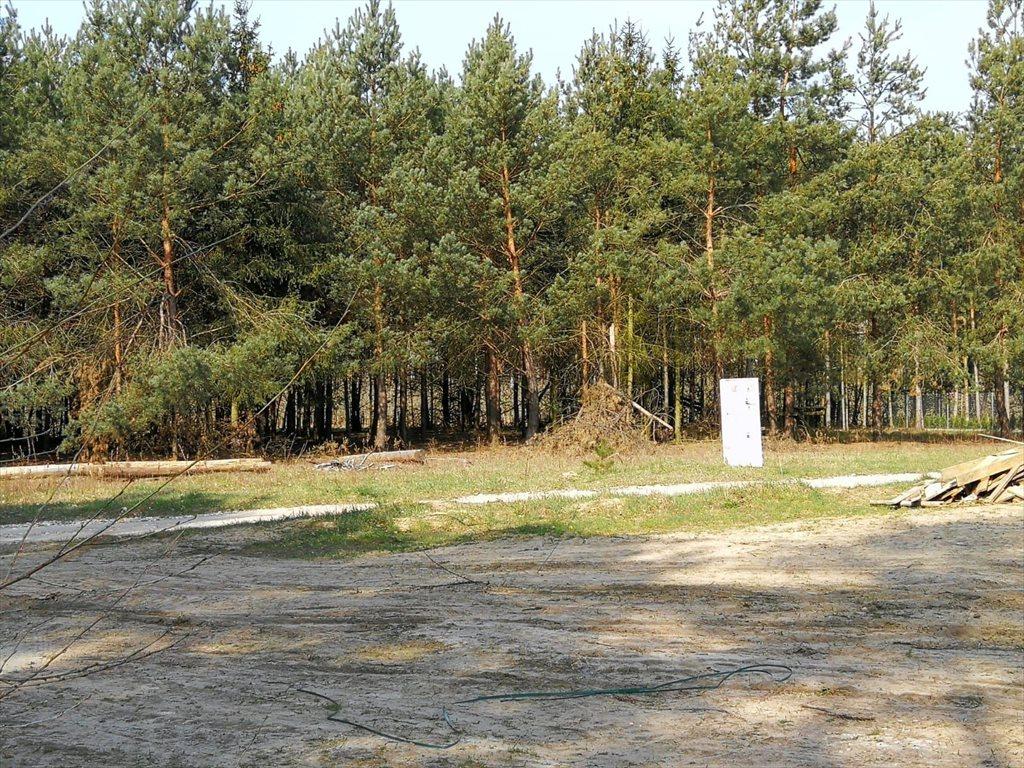 Działka budowlana na sprzedaż Kruszew  6000m2 Foto 2