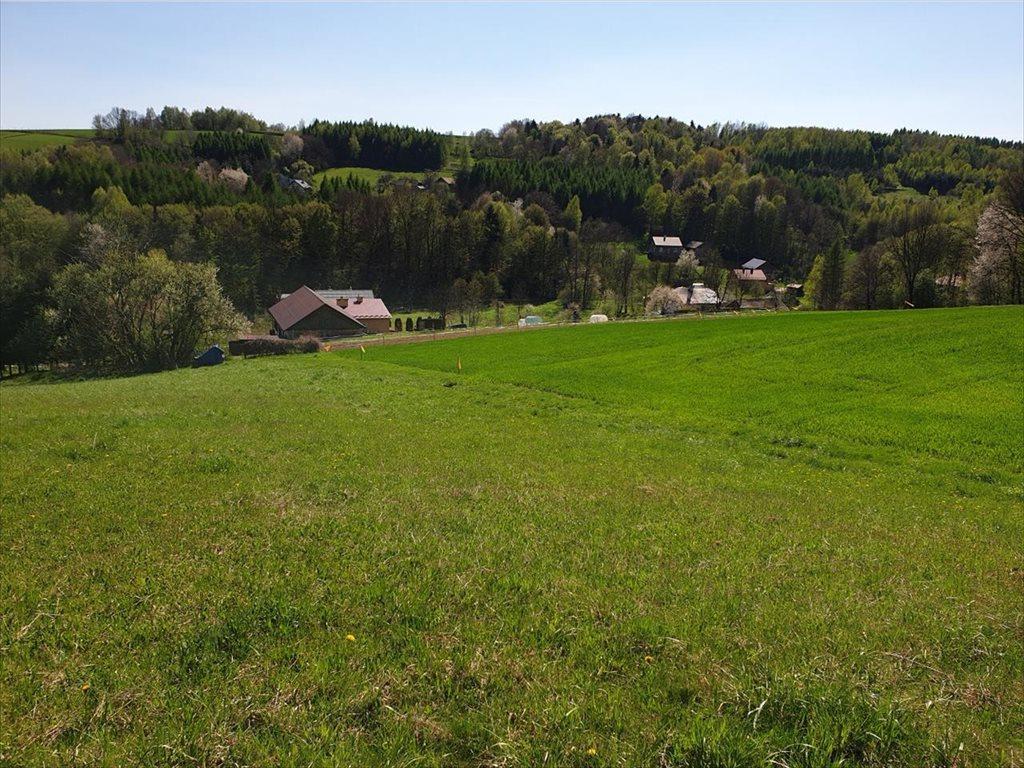 Działka rolna na sprzedaż Czudec, Czudec  8800m2 Foto 8
