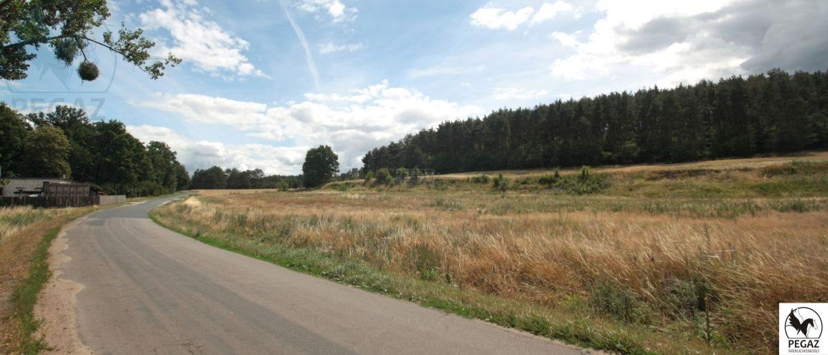Działka rolna na sprzedaż Milcz, Holna / Zajęcza  6175m2 Foto 9