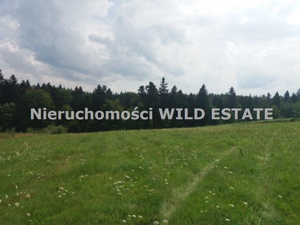 Działka rolna na sprzedaż Solina, Werlas  5011m2 Foto 2