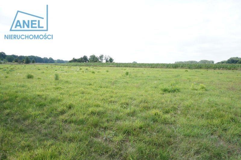 Działka rolna na sprzedaż Mikołów, Paniowy  1086m2 Foto 5