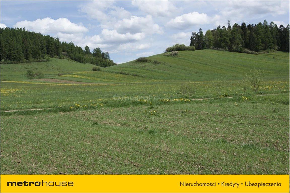 Działka rolna na sprzedaż Niedzica, Łapsze Niżne  1247m2 Foto 9