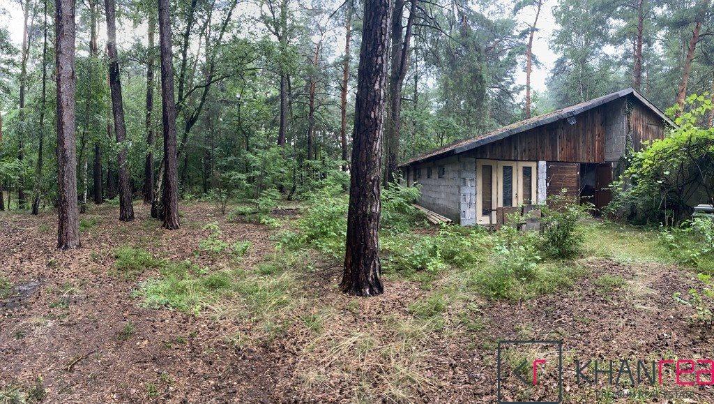 Działka leśna z prawem budowy na sprzedaż Józefów  2860m2 Foto 5