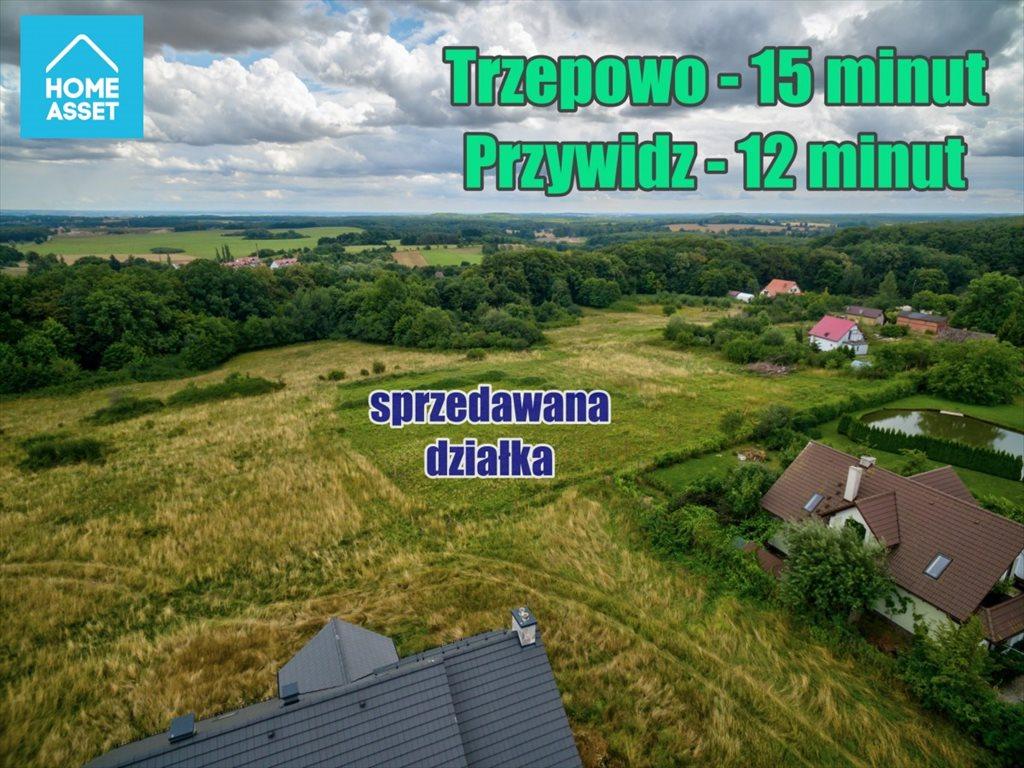 Działka budowlana na sprzedaż Buszkowy, Leśna Góra  3000m2 Foto 3