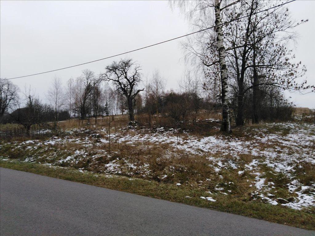 Działka siedliskowa na sprzedaż Stare Gałkowice, Kamieńsk  34200m2 Foto 7