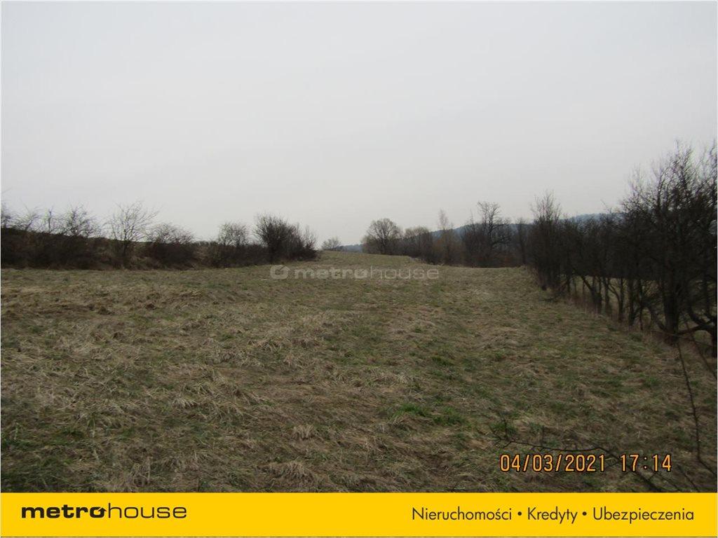 Działka rolna na sprzedaż Morochów, Zagórz  10000m2 Foto 12
