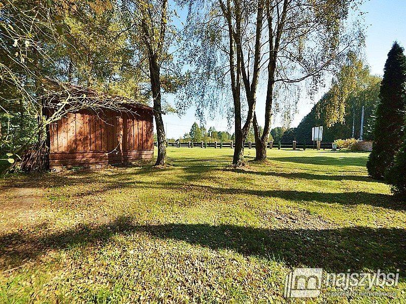 Lokal użytkowy na sprzedaż Trzebież, Wieś  530m2 Foto 13
