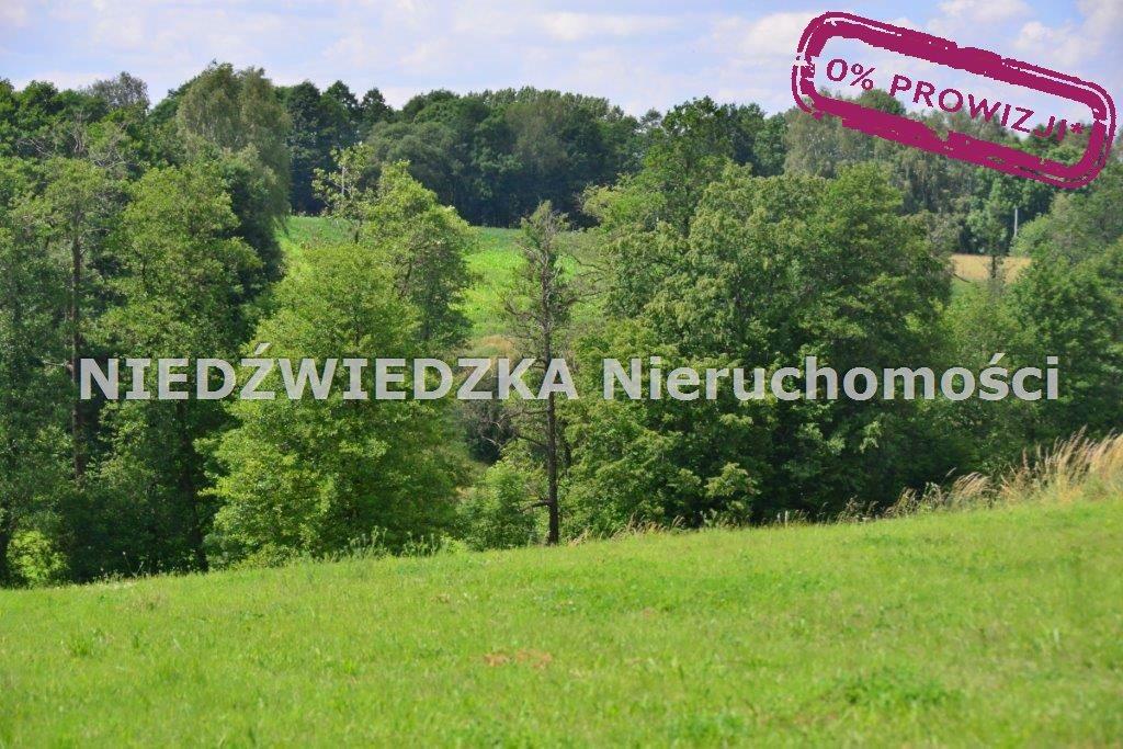 Działka budowlana na sprzedaż Mikołów, Mokre  12507m2 Foto 10