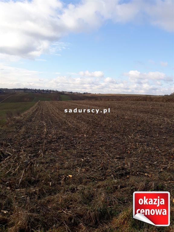 Działka rolna na sprzedaż Głęboka  10143m2 Foto 7