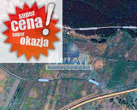 Działka rolna na sprzedaż Reptowo  12500m2 Foto 1