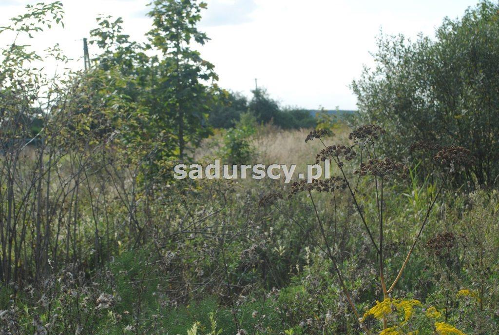 Działka budowlana na sprzedaż Balice, Krakowska  4200m2 Foto 5