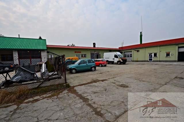 Lokal użytkowy na sprzedaż Maćkowice  488m2 Foto 5