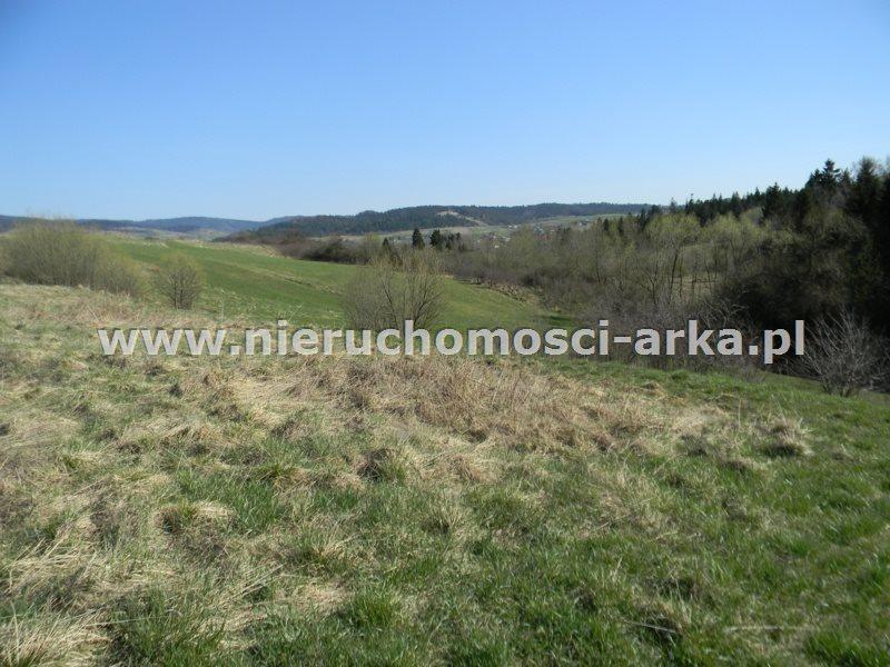 Działka rolna na sprzedaż Rabka-Zdrój  2383m2 Foto 1