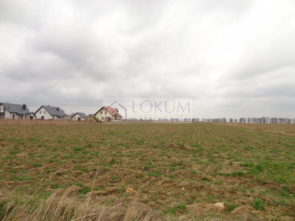 Działka budowlana na sprzedaż Nasutów  2000m2 Foto 1