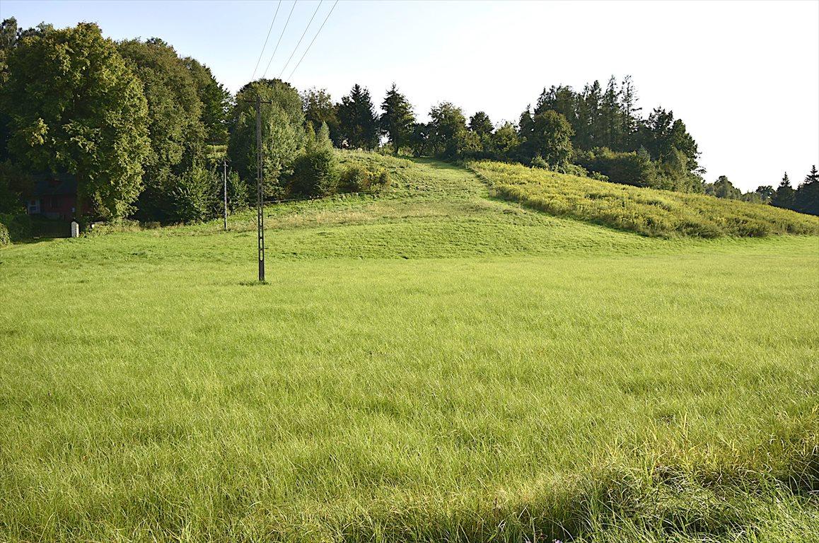 Działka rolna na sprzedaż Kazimierz Dolny  10000m2 Foto 2