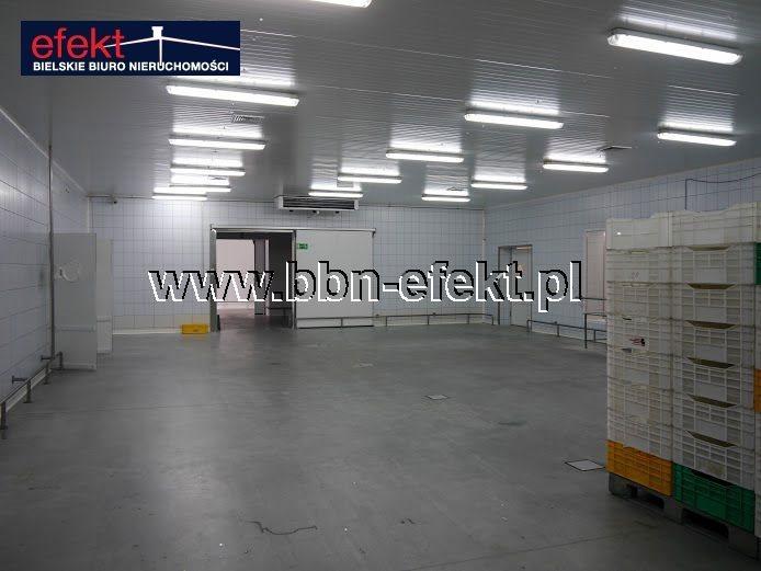 Lokal użytkowy na sprzedaż Rybarzowice  1880m2 Foto 4